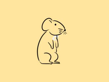 偷吃的老鼠簡筆畫怎么畫