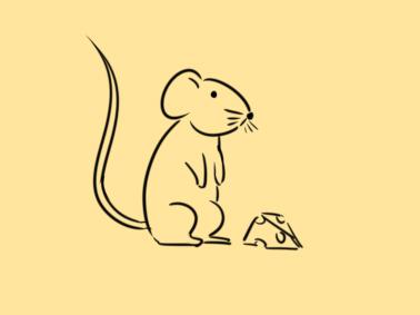 偷吃的老鼠简笔画怎么画