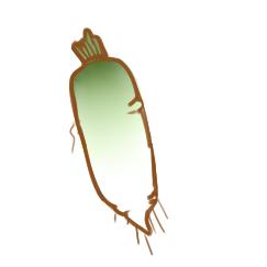 超簡單的白蘿卜簡筆畫原創教程步驟
