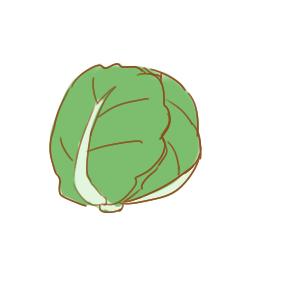 美味的包菜简笔画怎么画