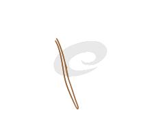超简单的青菜简笔画步骤图