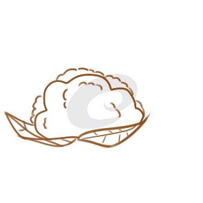美味的菜花简笔画怎么画