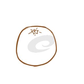 香甜的橙子简笔画怎么画