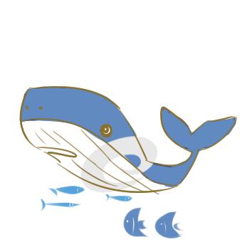 超简单的大鲸鱼简笔画步骤图