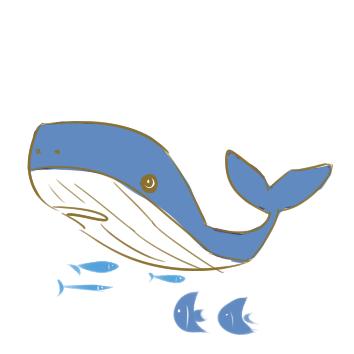 超簡單的大鯨魚簡筆畫步驟圖