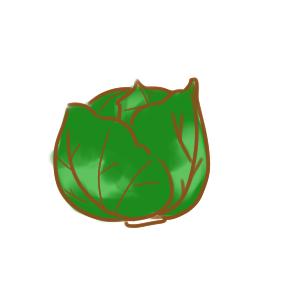 绿色的包菜简笔画教程图片大全