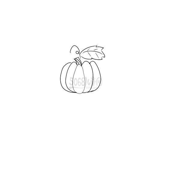 南瓜简笔画手绘