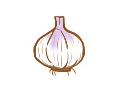 超简单的大蒜简笔画图片步骤图