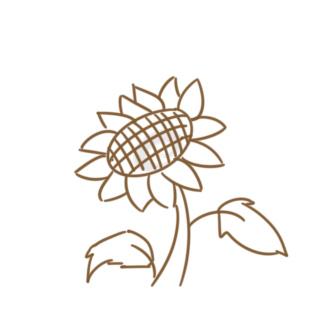 美丽的向日葵简笔画怎么画