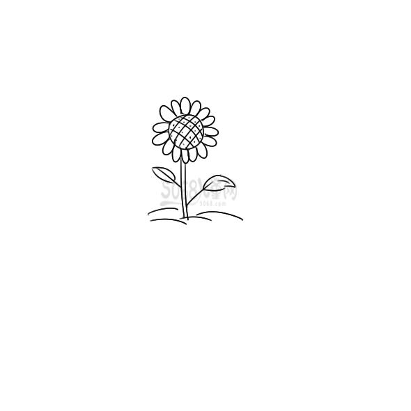 漂亮的向日葵要怎么画