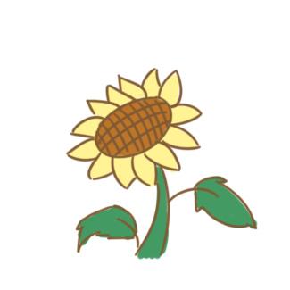 美麗的向日葵簡筆畫怎么畫