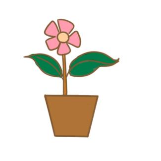 一盆花簡筆畫怎么畫