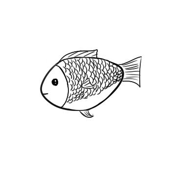 可爱的鲫鱼简笔画要怎么画