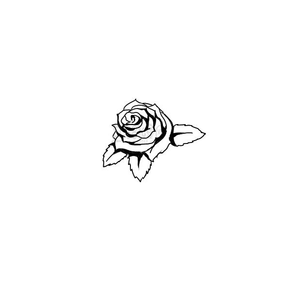 学画漂亮的玫瑰花简笔画教程