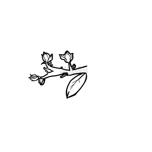 学画美丽的木兰花简笔画怎么画